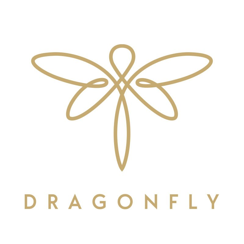 Hightech Startup Logo Design Dragnfly